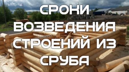 Сроки, необходимые для строительства бани или дома